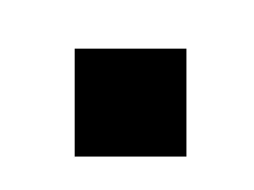 flecha-negro