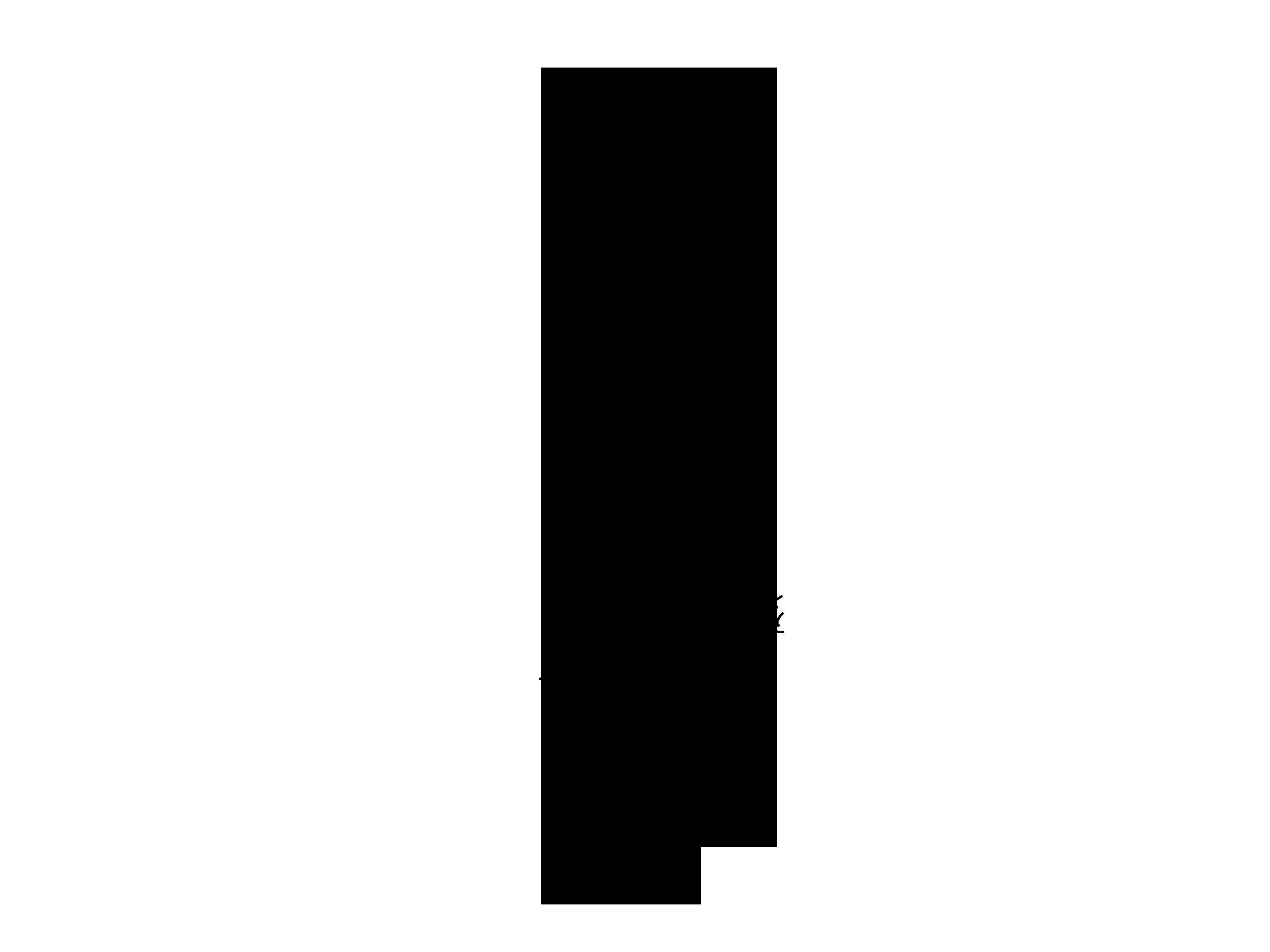pino-negro