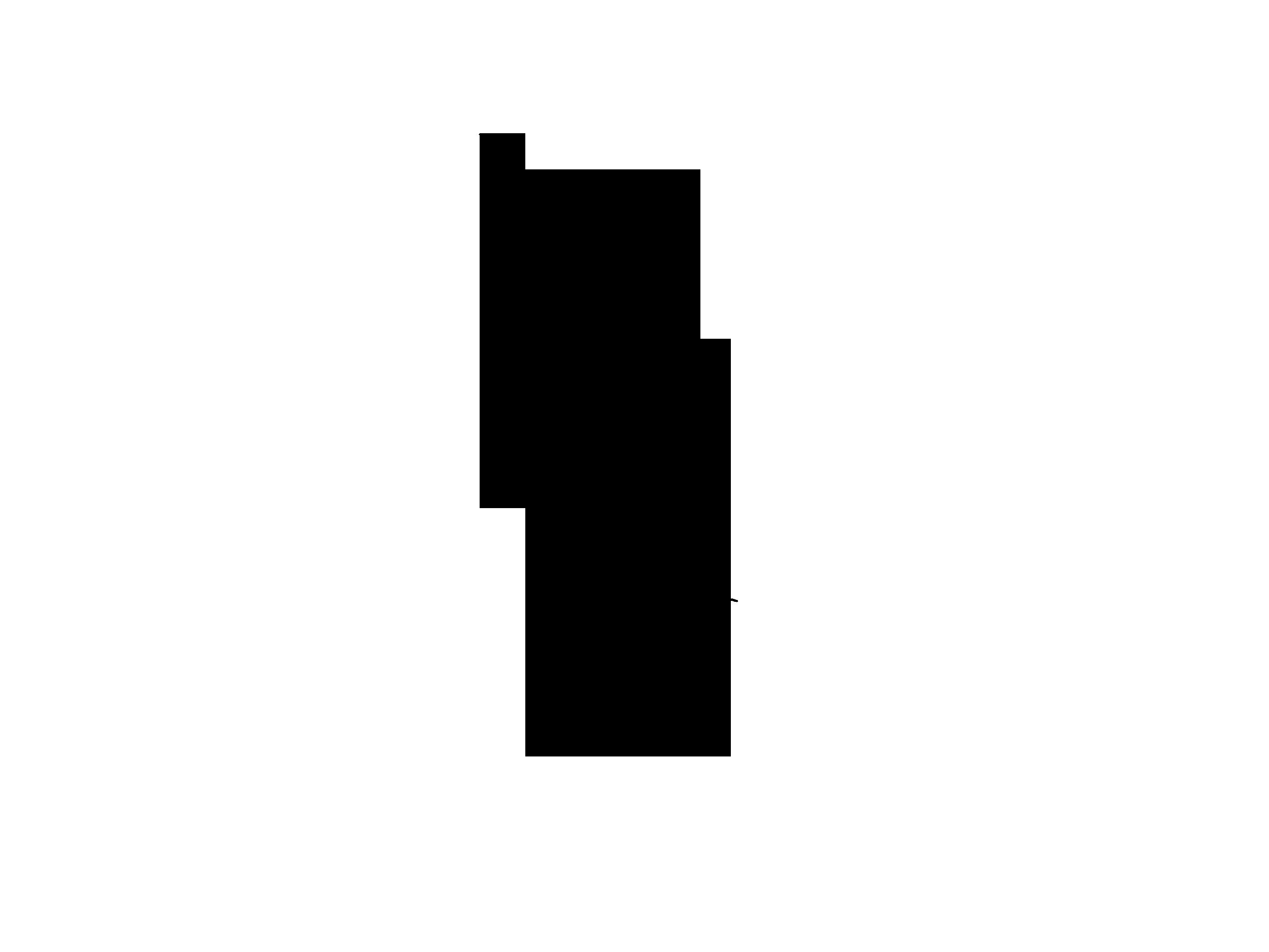pluma_3-negro