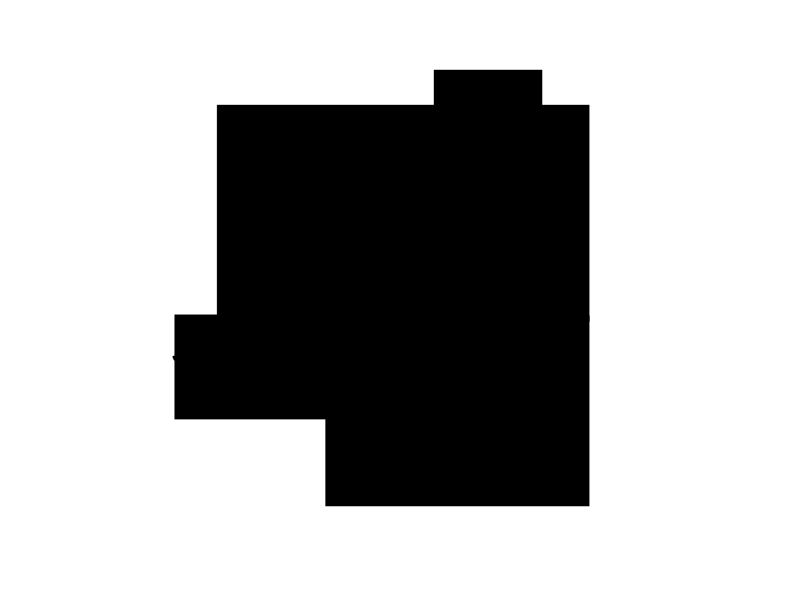 ramas-negro